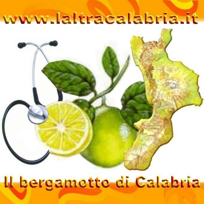 Bergamotto di Calabria