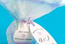 DIY Seed Bomb Party Favors