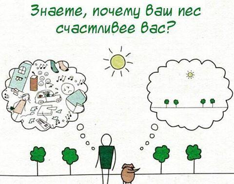 nagiev.k@gmail.com
