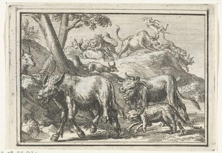Romeyn de Hooghe   Titelblad voor het pamflet: Het Cremoneesche Vreugdevuur, 1702, Romeyn de Hooghe, 1702   Fabel van de ezel die zich met de huid van een leeuw onherkenbaar maakt, een geit met de huid van een buffel en een haas met de huid van een kat. De dieren (Fransen) worden door de vos herkend en verraden en, op de achtergrond, door de echte dieren (de Geallieerden) verscheurd. Titel staat op apart tekstblad.