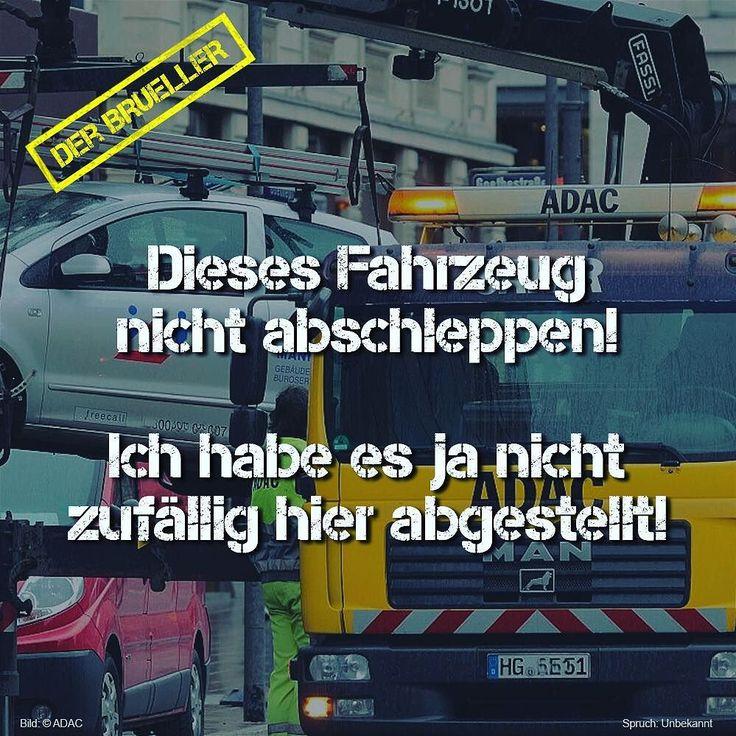 39 best autobeschriftung images on Pinterest   Plotten, Kätzchen und ...