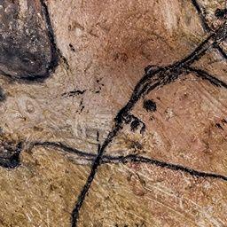 Cerca del arte parietal   La Grotte Chauvet-Pont d'Arc - Ardèche, France