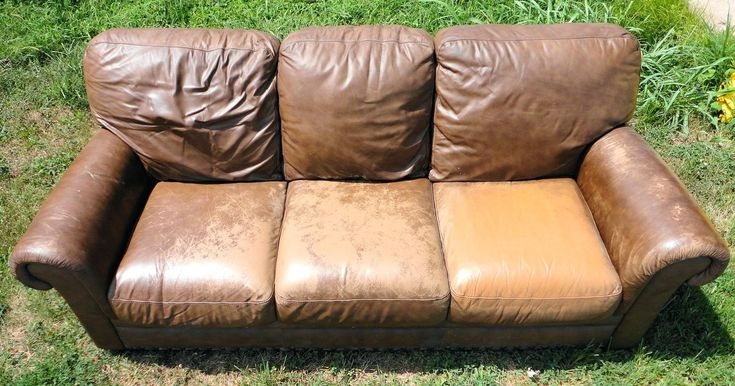 Best Natural Leather Couch Conditioner