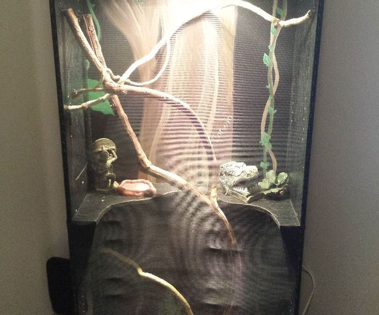 My son wanted a bearded dragon lizard for his birthday. After much research into habitats we decided we would make our own (for a fraction of the cost!)Here's what you will need:A bookshelf! (we purchased a cheap 5 shelf bookshelf for $32)Window screen materialStaples/Staple gunCaulkBranchesSand (we used specialty sand made for lizard habitats)Heat lamps and other lizard suppliesJig sawHook and eye closuresHinges.