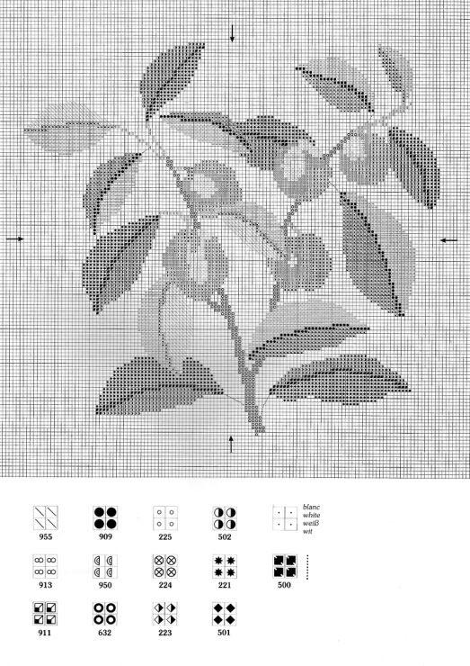 Prune royale (prunus domestica)