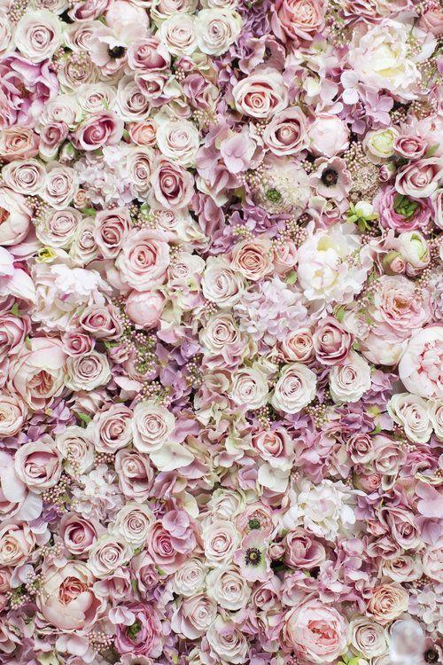 Blumen für immer