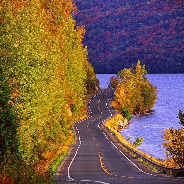 With the crisp air of fall upon us, now is the best time to begin mapping the year's best road trips | archdigest.com