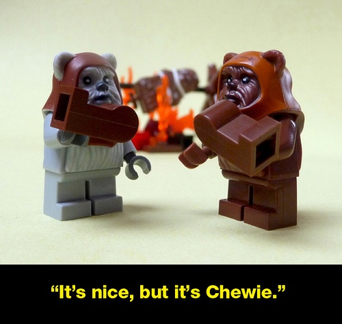 Lol ( Chewey is in the fire in the background for those who it dose not make sence)