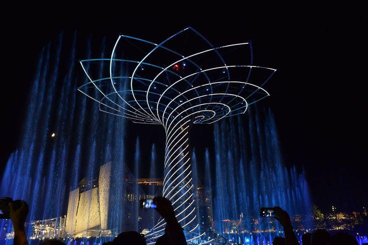 The Tree of Life. The colours of Expo Milan 2015 #raiexpo #expo2015 #worldsfair #milan #italy #treeoflife #alberodellavita #colours #life #strings
