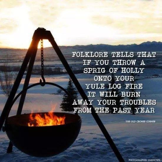 takje hulst in vuur