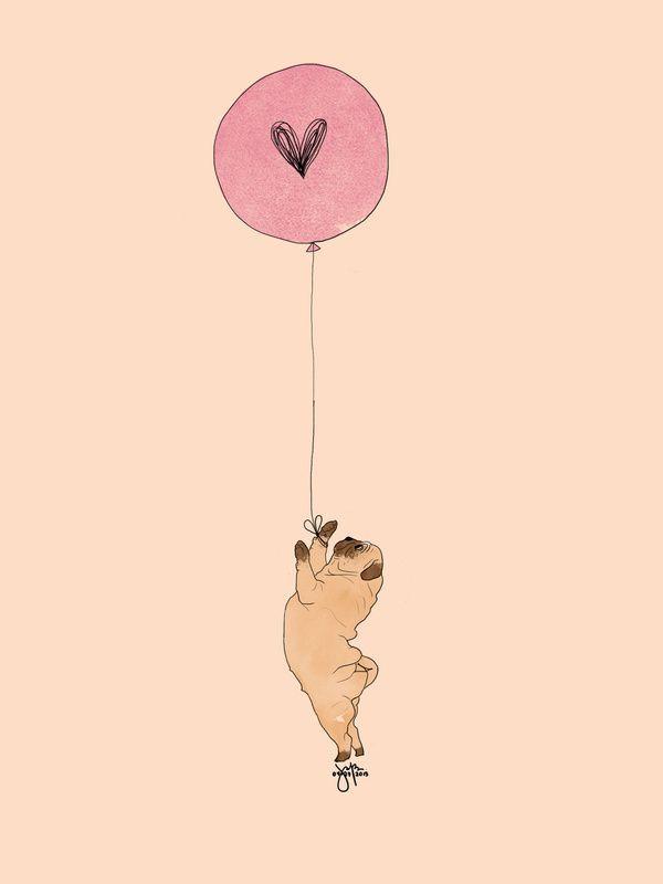 #love #pug