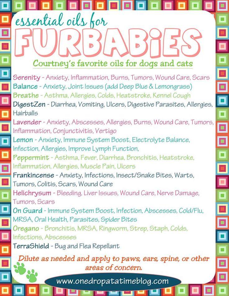 Essential oils for our pets (our furry family)  | Where to buy essential oils: www.thepaleomama.com/essential-oils
