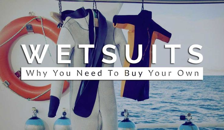 Diving Wetsuit: Why You Need To Buy Your Own