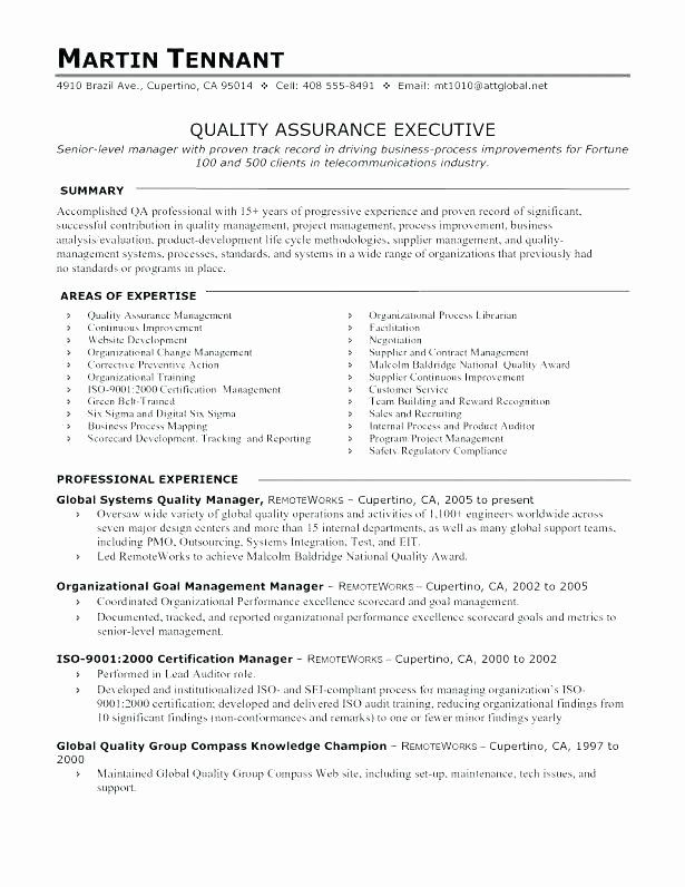 Software Development Contract Template In 2020 Sample Resume