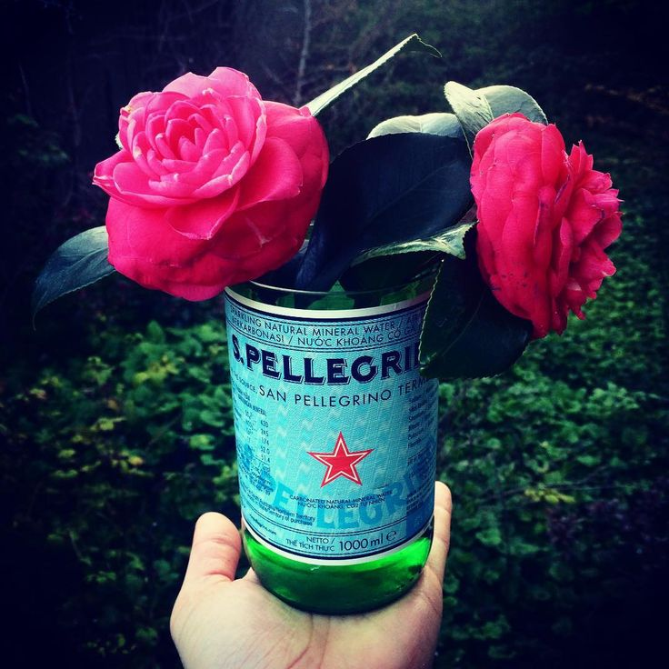 Twice Drunk Flower Arranging.  1. Pick flowers.  2. Stick in cool upcycled vase.  3. Spend the evening admiring your creation from a short distance.  #TwiceDrunk #upcyle #recycle #repurpose #flower #flowerarrangement #sanpellegrino #glass #bottle #melbourne #melbournerecycled #spring