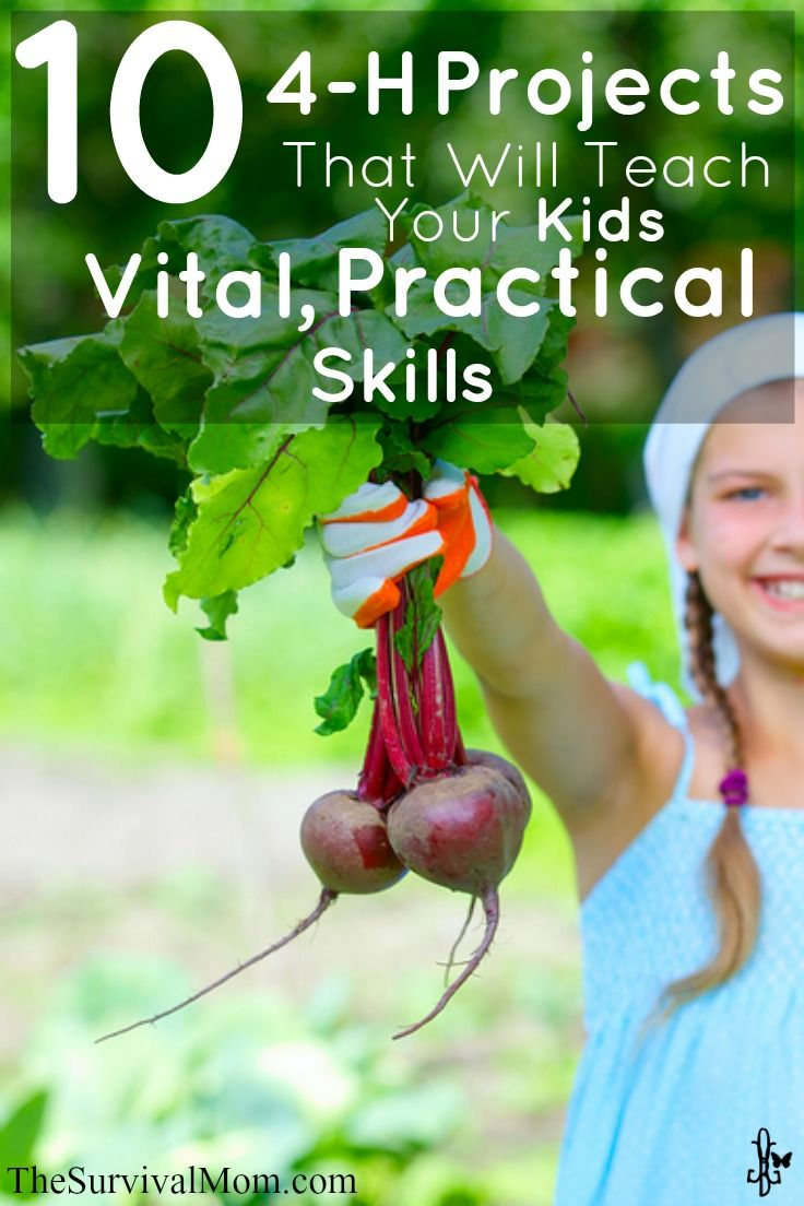 10 4-H Projects That Will Teach Your Kids Vital, Practical Skills | www.TheSurvivalMom.com