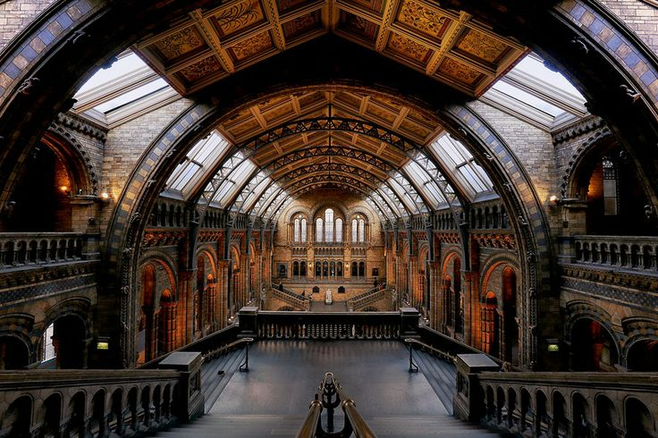 Natural History Museum by Richard Harris on 500px