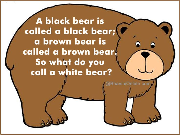 Fun Riddle What Do You Call A White Bear Bhavinionline Com White Bear Bear Jokes Riddles