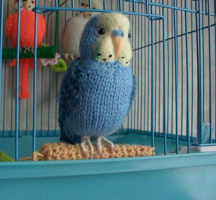 Crocheted Parakeets Cute Crafts Pinterest