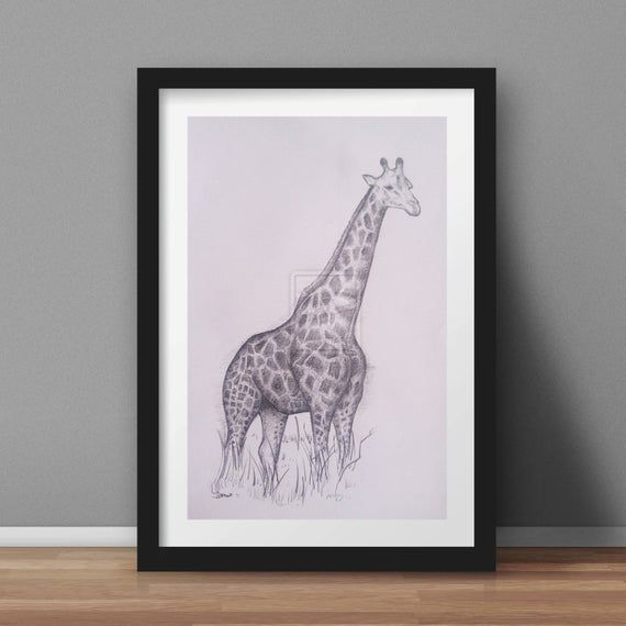Giraffe Art Pencil Drawing High Quality Signed A4 Print ...