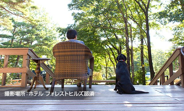 ワンコネット那須 愛犬 ペットと一緒に楽しめる那須高原の旅行情報 宿ペンション情報が満載 ペンション 宿 旅行
