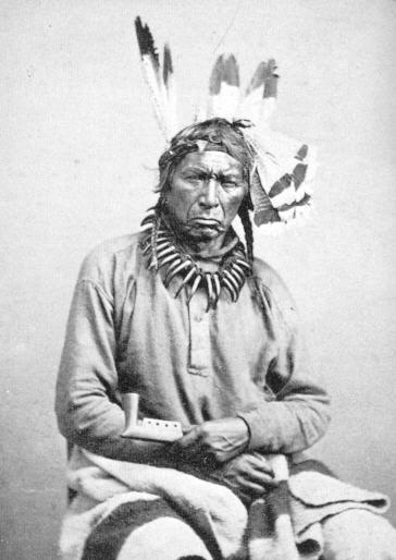 Ne-bah-quah-om (Big Dog), Ojibway chief. Photographer: Whitney Gallery Photograph Collection, Carte-de-visite, 1865.