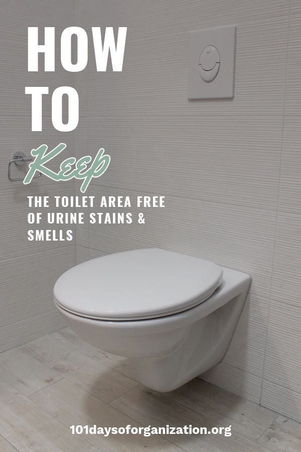 How To Keep The Toilet Area Free Of Urine Stains Smells In 2020 Urine Stains Bathroom Cleaning Hacks Urinal