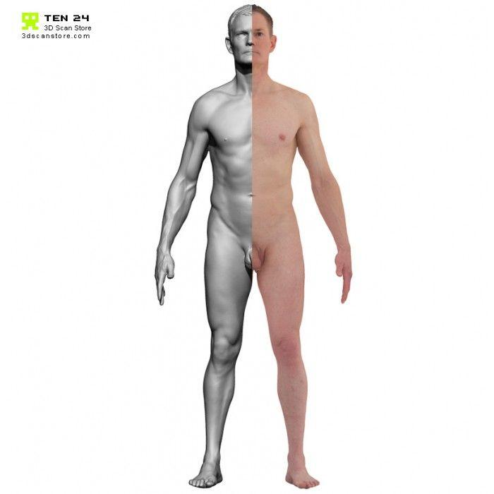 Colour male 04 anatomy bundle