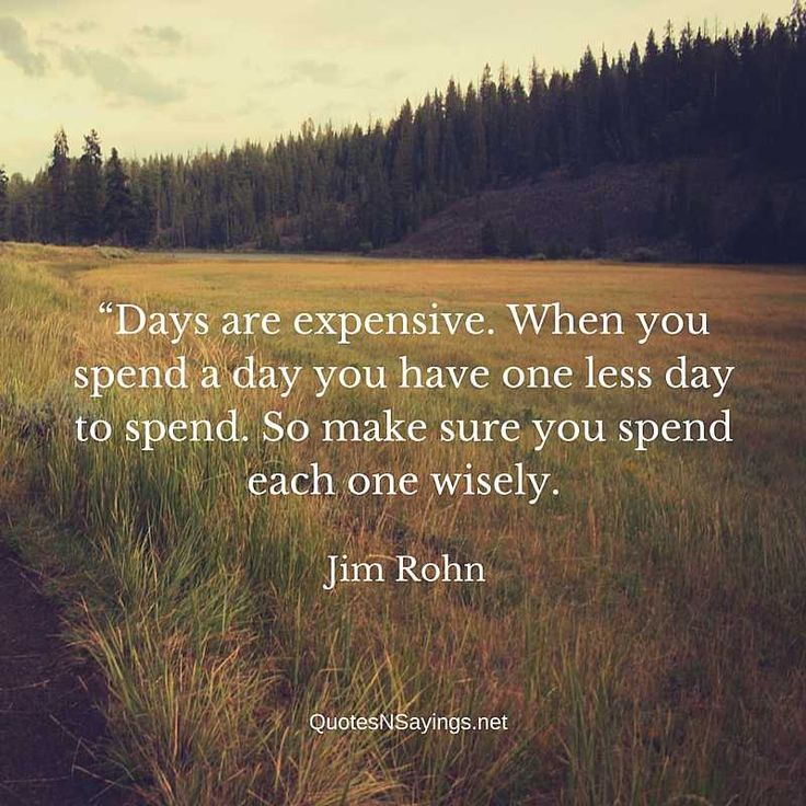 Jim Rohn Quotes - Days are expensive.