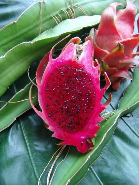 Question 2: Pitahaya- it would be great if you use such a funky looking fruit as this one in combination with some others