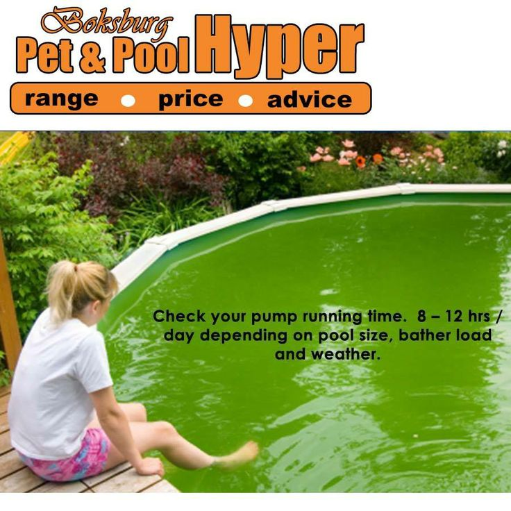 Algae on walls & floor (poor circulation and or filtration) Check your pump running time. 8 – 12 hrs / day depending on pool size, bather load and weather. Sufficient chemicals for pool size, bather load and weather? How old is your filter sand? Filter sand should be changed every 2 years.  Contact your nearest Pet & Pool Hyper Boksburg #swimmingpool #pooltips
