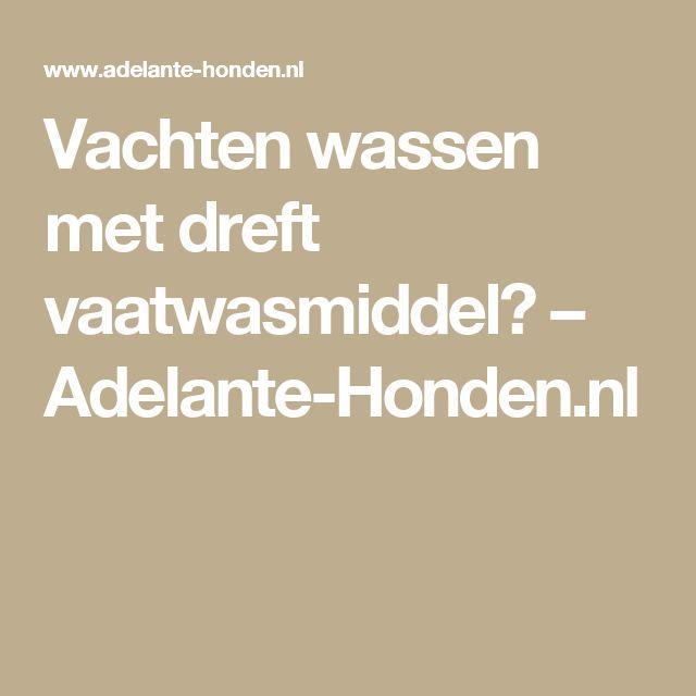 Vachten wassen met dreft vaatwasmiddel? – Adelante-Honden.nl