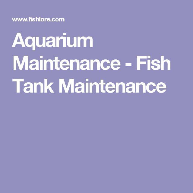 Aquarium Maintenance - Fish Tank Maintenance