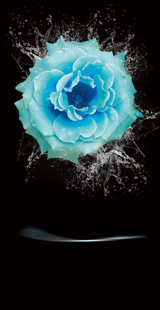 جميل وردة زرقاء الخلفية فلم Rose Background Beautiful Roses Rocks And Crystals