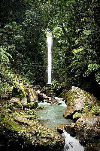 dumaguete-casaroro-falls