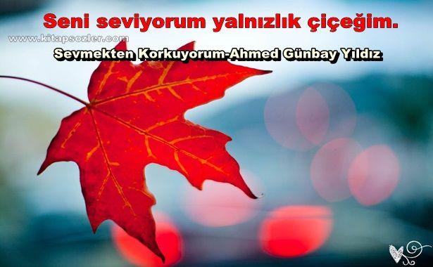 Seni seviyorum yalnızlık çiçeğim… Sevmekten Korkuyorum-Ahmed Günbay Yıldız http://www.kitapsozler.com/resimli-kitap-sozleri/