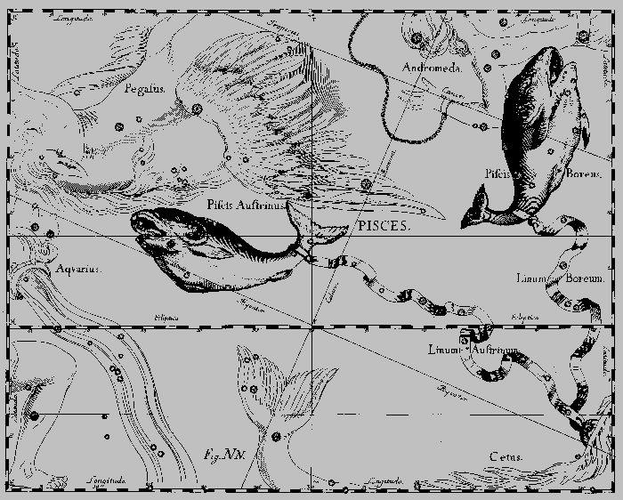 Атлас звездного неба Яна Гевелия. Зодиакальное созвездие, известное с древнейших времен. В Древнем Египте Солнце проходило это созвездие весной, в сезон наиболее успешного лова рыбы — одного из основных источников питания населения. Вместе с двумя соседними созвездиями - Козерогом и Водолеем, Рыбы образуют небесное море, пересекая которое, Солнце посылает на Землю обильные дожди.