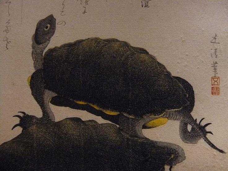 """GOSEI Hotei,1810 - Deux Tortues (Guimet) - Detail -b  -  TAGS : art painter details détail détails detalles painting paintings peinture peintures 19th 19e """"peinture 19e"""" """"19th-century paintings"""" """"19th century"""" """"details of painting"""" """"details of paintings"""" tableaux paintings Guimet Gosei Hotei """"Hotei Gosei"""" """"Epoque Edo"""" Edo """"Deux Tortues"""" tortue turtle animal nature Japon Japan"""