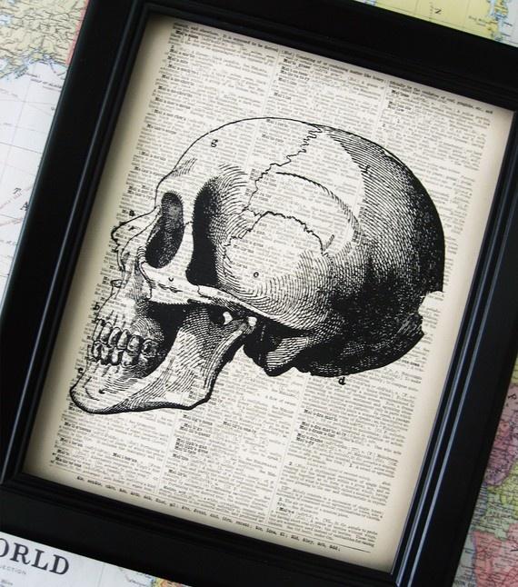 Anatomy Art Prints via kiintage's etsy shop. Want for walls. I LOVE vintage a & p prints.