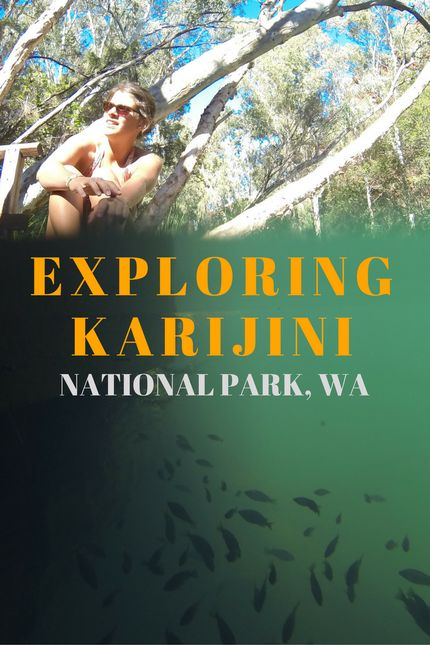 Exploring Karijini National Park, WA   The park is all the shades of red that you can imagine with many unusual and interesting rock formations, gorges, natural pools and waterfalls. – Be Yourself by Charlie
