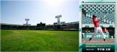 秋の甲子園歴史館イベント第二弾のお知らせです 10月29日土と30日日には第2弾としてスタジアムツアーの特別イベント阪神甲子園球場でフルスイングイベントが行われます  通常のスタジアムツアーに加え参加者のお名前をウグイス嬢がアナウンスするとともに実際に阪神甲子園球場のバッターボックスに立ってフルスイングトスバッティング又はティーバッティングをするという普段のツアーでは体験することができない特別な内容です  プロのカメラマンが撮影し特製のフォトフレームに入ったバッティングの際の写真を記念として購入も可能  阪神甲子園球場でフルスイングイベントの概要  開催日程2016年10月29日土30日日 (1)16:3017:30(2)17:1518:15(3)18:0019:00の各日3回開催  約60分間 募集人数各回20名合計120名 ご応募多数の場合は抽選 参加対象小学生以上 参加料金おとな3000円こども2000円(税込) 甲子園歴史館入館料を含みます tags[兵庫県]