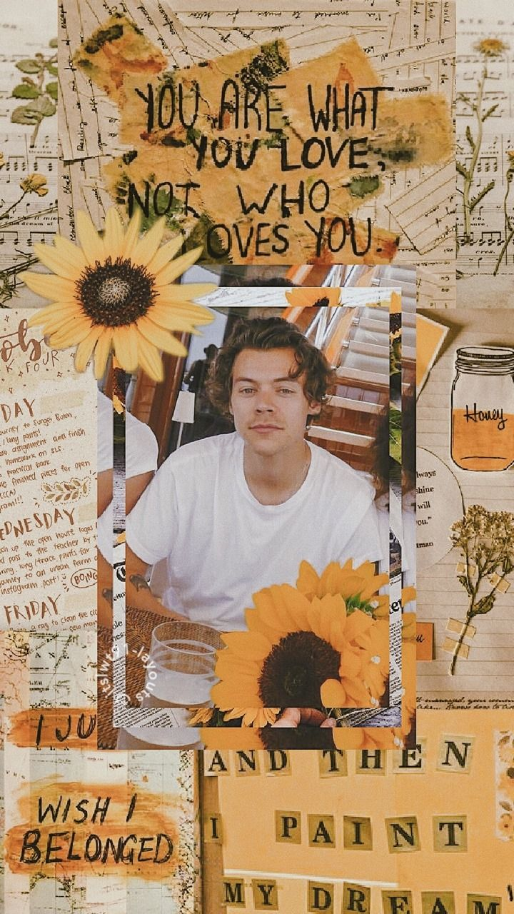 Harry Styles Wallpapers Tumblr Harry Styles Wallpaper Iphone