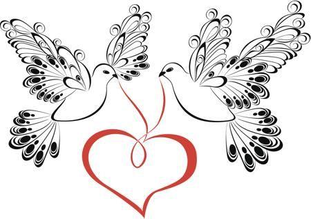 Dove Symbol of Love | The Eternal Bond of Love