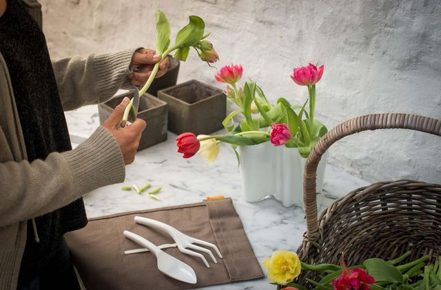 58 best jardinage et entretien du jardin images on