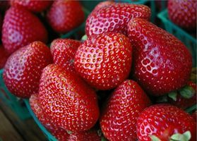 When to Plant Strawberries in Zone 6
