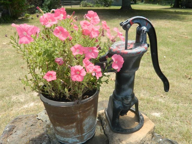 16 Best Backyard Garden Images On Pinterest