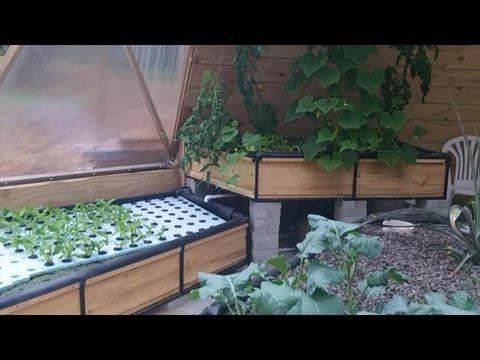 Amazing geodesic dome green house with aquaponic system. This is 2 of 3.