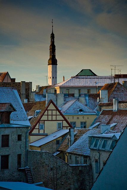 Rooftops of Old Town Tallinn, Estonia. Tallinn's medieval Old Town is known around the world for its well-preserved and authentic Hanseatic architecture. (V)