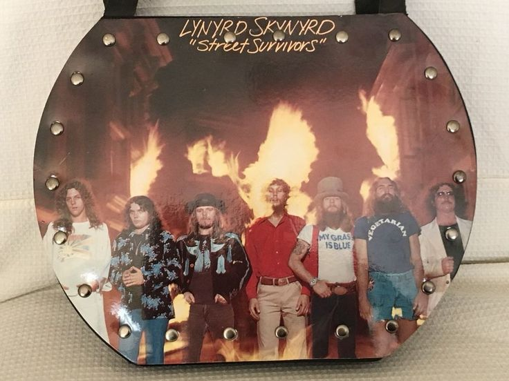 LYNYRD SKYNYRD 1977 STREET SURVIVOR BAND IN MY HAND RECORD BAG PURSE USA  | eBay