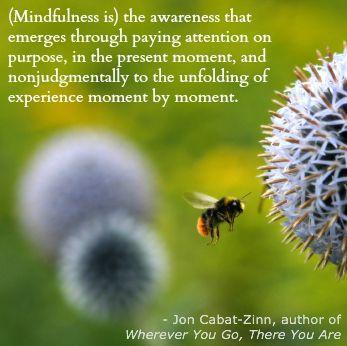 Mindfulness - John Cabat-Zinn